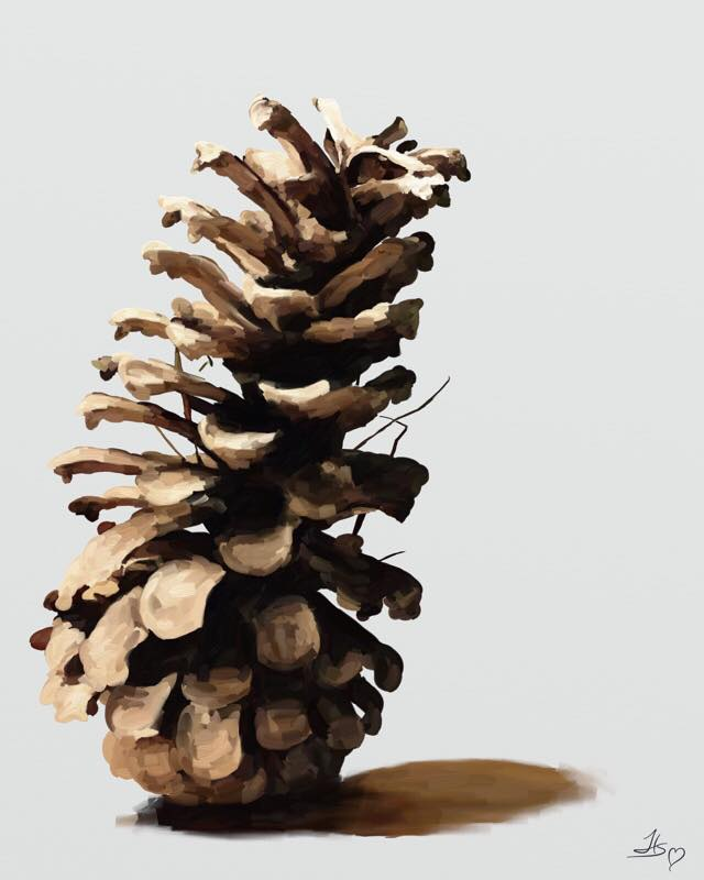 day-634-pinecone-kindcone