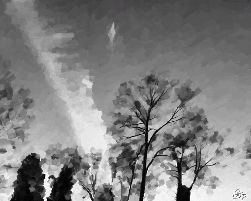 Day 690 Shade Tree