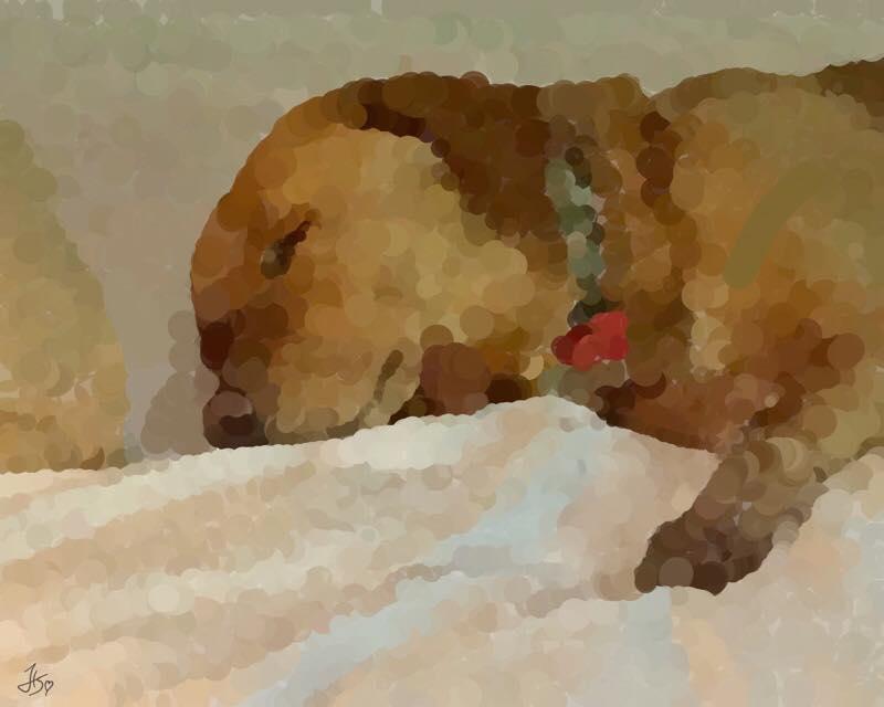Day 784: The Sleeping Beast